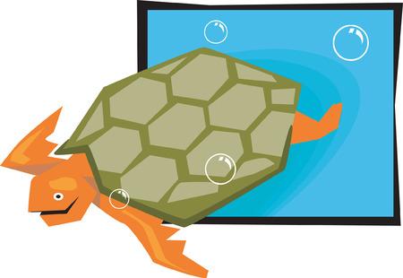 subaquatic: Tortoise swimming