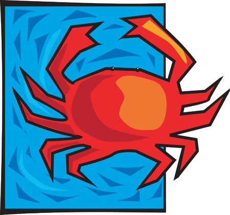 crab in a blue background