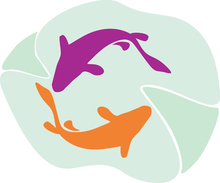 Two dolphins swimming  Vector