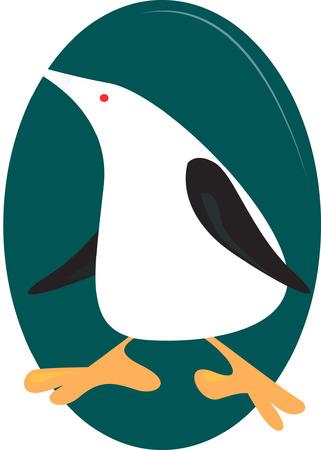 trouser: Penguin