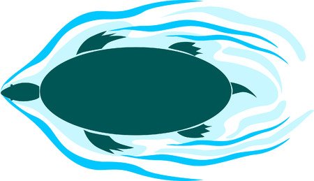 A tortoise swimming  Vector