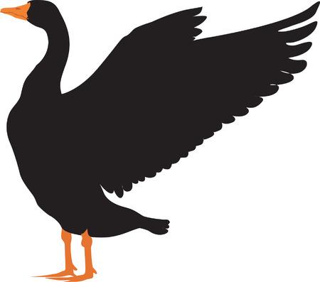 その翼を振って黒アヒル  イラスト・ベクター素材