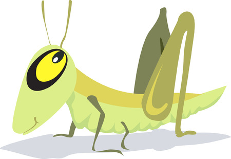 A yellow eyed grasshopper wooing with eyes open