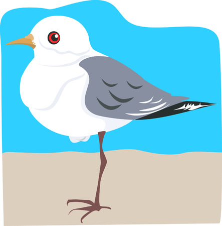 magpie: A robin magpie standing one-legged n a brown surface beyond sky blue back ground Illustration