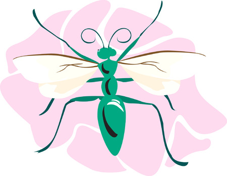 A green body coloured bee on a pink surface Vector