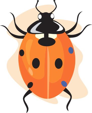 lady bug: Eine lebendige farbige Dame Fehler bewegen Illustration