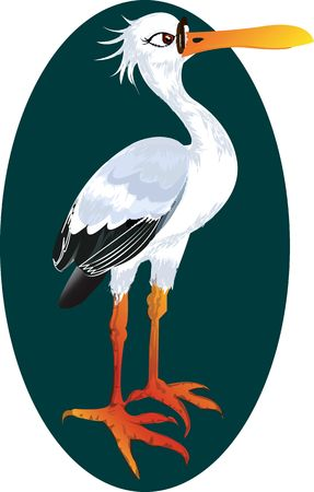 whooping: Illustration of Whooping Crane