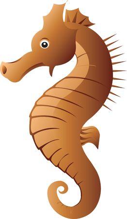 sea horse: Illustration of  Sea Horse