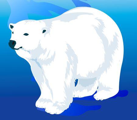 Illustration of   Bear Stock Illustration - 2198161