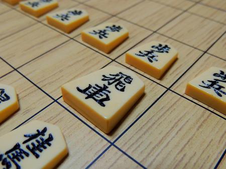 Chess pieces (hishakaku)