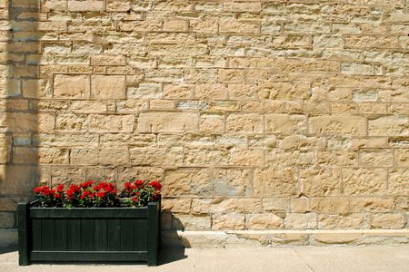 harsh: Every summer someone places a planter box to soften the harsh expanse of limestone wall. Stock Photo