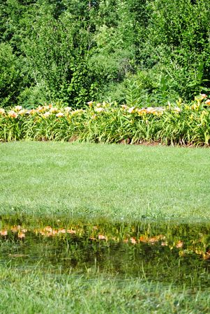 Puddled rainwater makes an informal reflecting pool. Reklamní fotografie