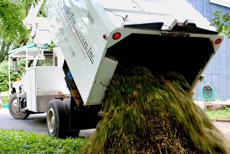 truck delivering a load of wood chips Stock Photo