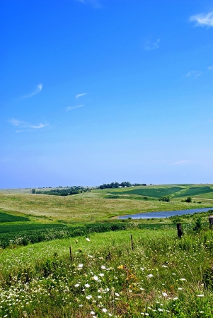 Typical Iowa countryside in late summer, with wildflowers at the edge of the road and gently rolling hills covered in fields and pastures under the wide blue sky. Stock Photo