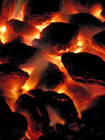 coals ready for the cookout photo