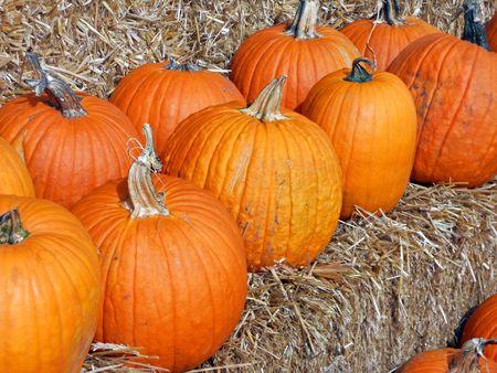 Jack o lantern pumpkins for sale at market photo