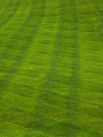 Grass lawn freshly mown in professional crosswise manner creates a plaid pattern.