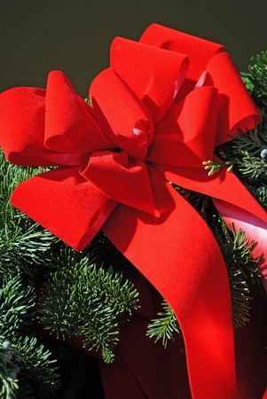 A big red ribbon bow on an evergreen branch. 版權商用圖片