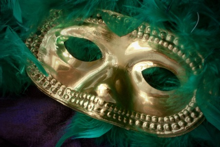 Mardi Gras mask and feathers on a velvet background.