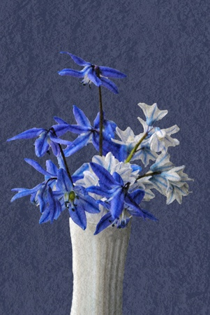 Blue and white scilla flowers in a milk glass vase. Stock fotó - 9373783