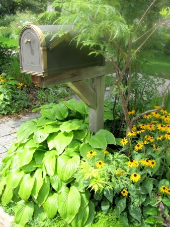 Curbside mailbox on a post in a suburban garden.