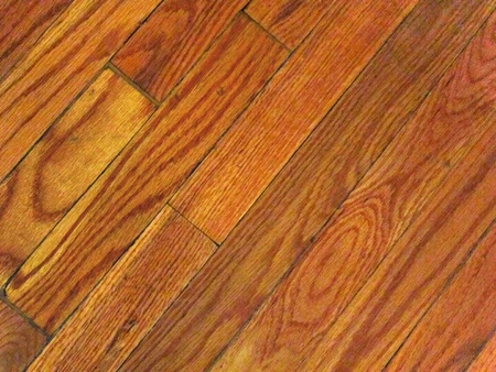 Beautiful oak hardwood floor viewed at an angle. Great background for your copy text. photo
