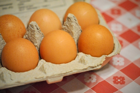 Speckled brown eggs in a cardboard carton on a red checkered tablecloth.