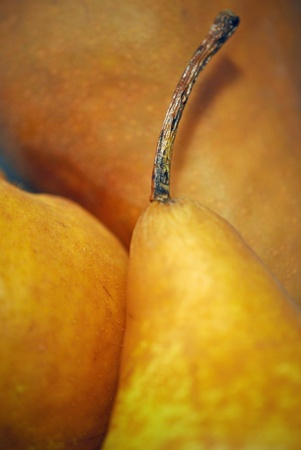 Close up of pears  photo