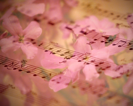 sheet music: Flowers and music combine to form a beautiful romantic background. Stock Photo