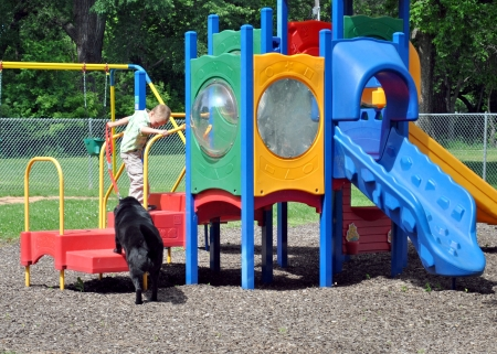 Young boy coaxes the dog onto the playground equipment  photo