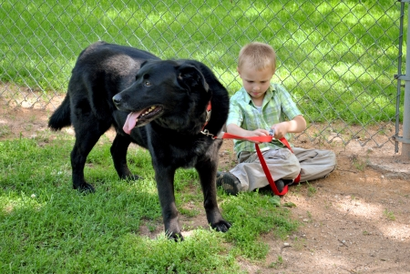 clasp: Young boy struggles to open the clasp on the dog s leash