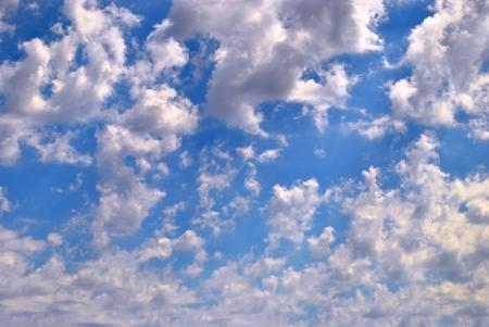 altocumulus: Sky full of gleaming altocumulus clouds