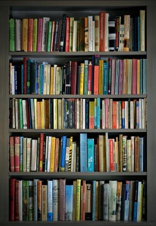 Bücherregale mit Bücher geladen