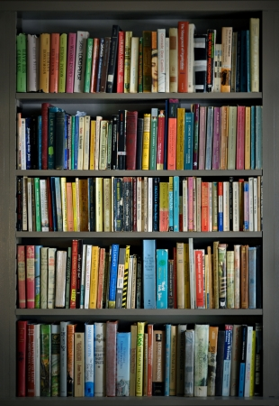 Bookshelves loaded with books