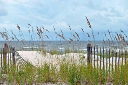 Sand dunes fringed with sea oats; northwestern Florida coast of Gulf of Mexico Stock Photo - 15639824