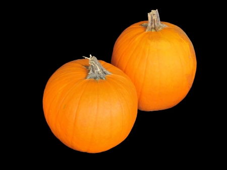 Two pumpkins isolated on black background