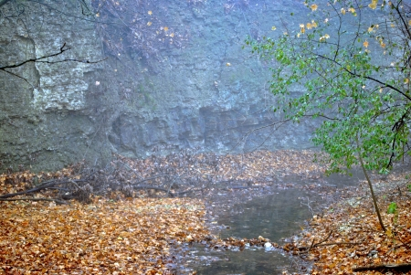 A little stream runs at the foot of the limestone cliff; morning fog softens the scene