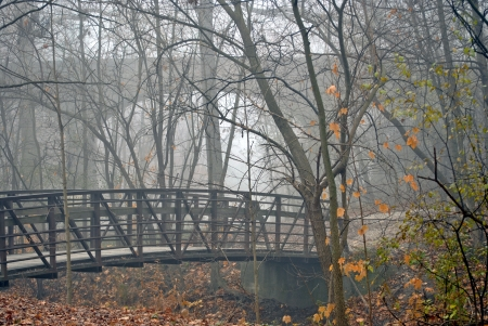 woodsy: A view of the little footbridge and a glimpse through the fog of the bigger bridge beyond