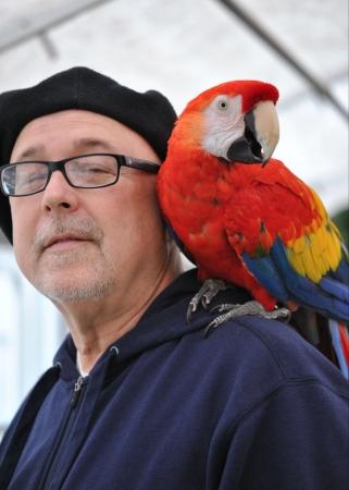 Parrot on its owner s shoulder
