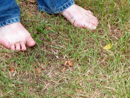 unpretentious: Bare feet in the grass  Stock Photo