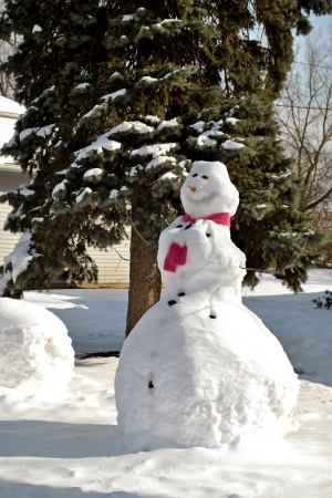 A pink scarf, carrot nose, and charcoal eyes and buttons embellish this  jolly snowman in a suburban yard    Stock Photo
