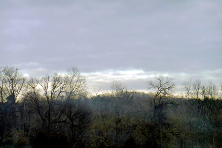 Clearing sky above the wooded hillsides; fog clings to the trees