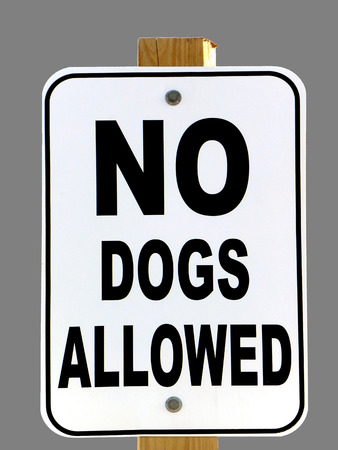 Sign reads  NO DOGS ALLOWED; isolated on grey Imagens