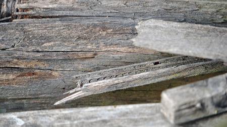 ferraille: Scrap planches de bois