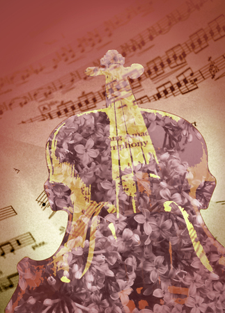 sheet music: Viola, sheet music, and lilacs composition