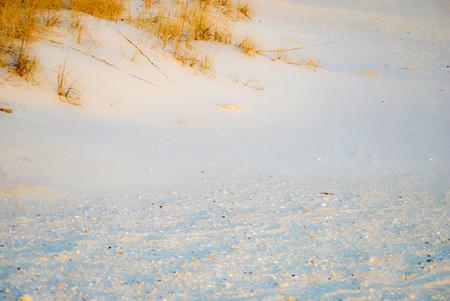 dreamy: Sandy beach with soft dreamy effect