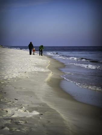 beachcombing: Family beachcombing