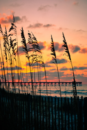 sunup: The moment of sunrise on the beach