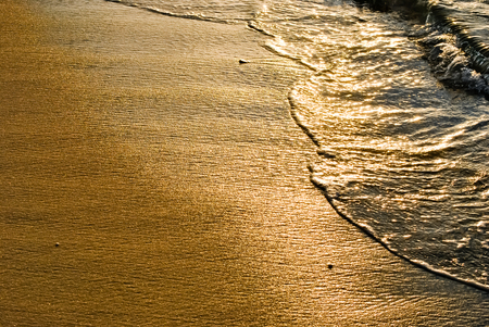 liquid gold: Sunrise turns the waves to liquid gold.