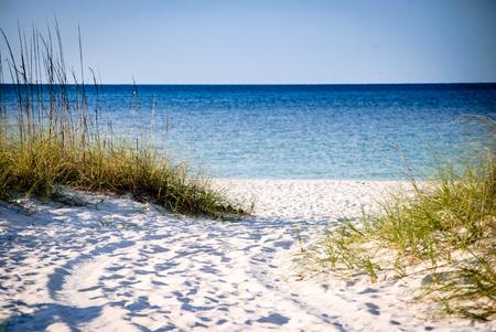 Path to the beach Standard-Bild
